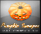 Pumpkin Sweeper